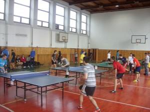 stolný tenis 2014 019