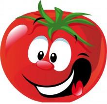 paradajka-3