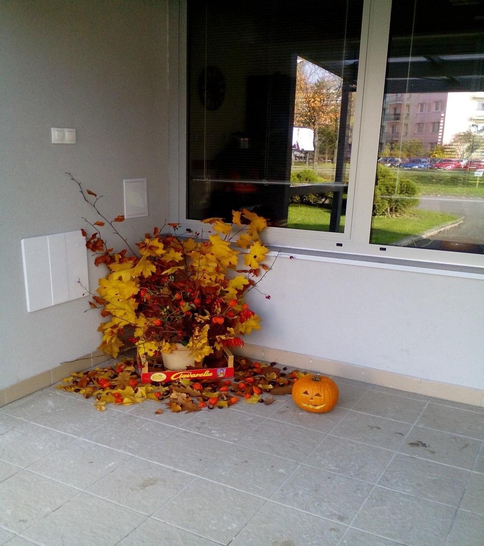 Jeseň v ŠI