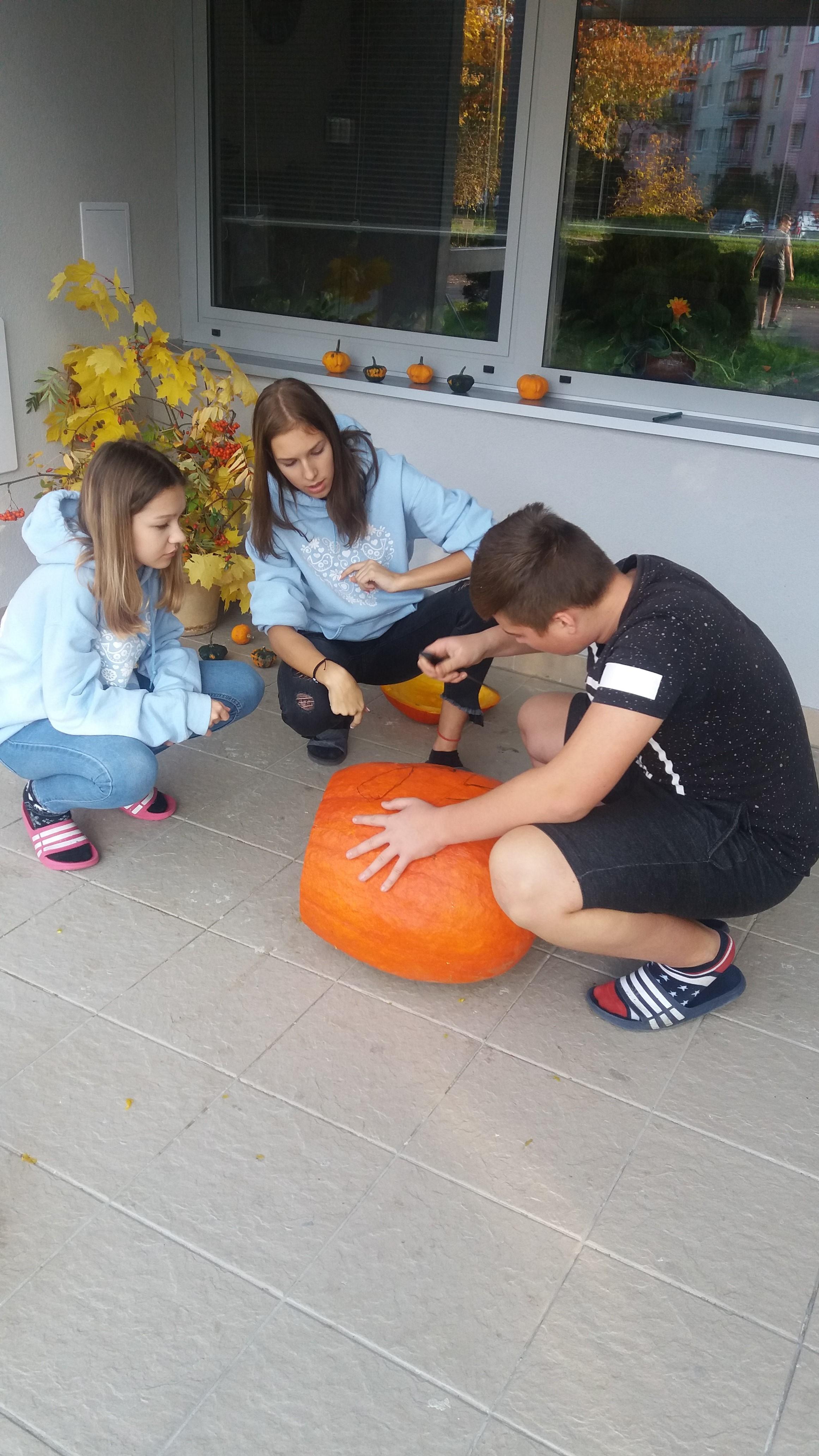 c59d57043 Opäť je tu jeseň | Stredná odborná škola dopravná, Žilina