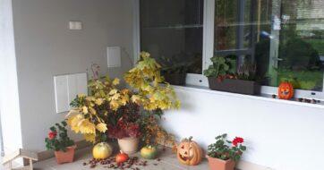 Jesenná   výzdoba   školského internátu